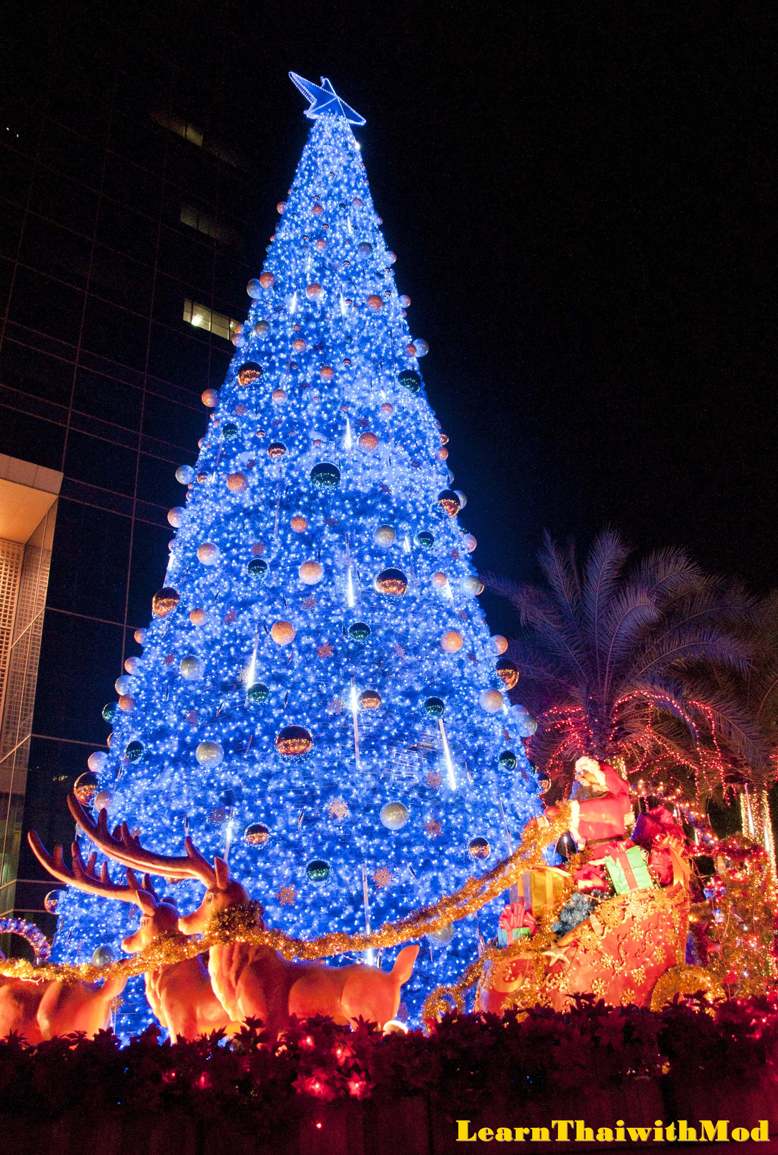 Bangkok's Christmas Lights | Learn Thai with Mod